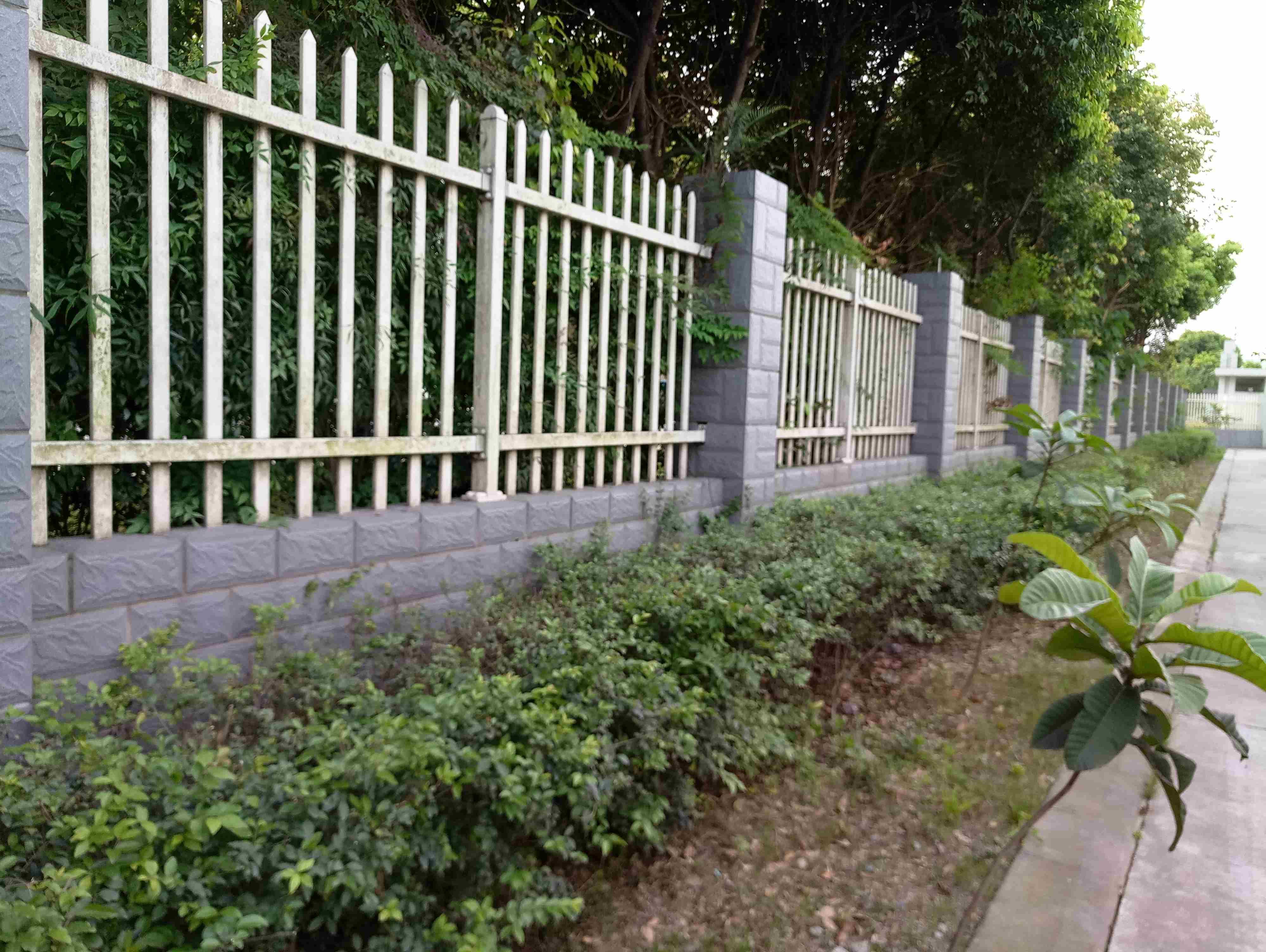 工業區護欄綠化